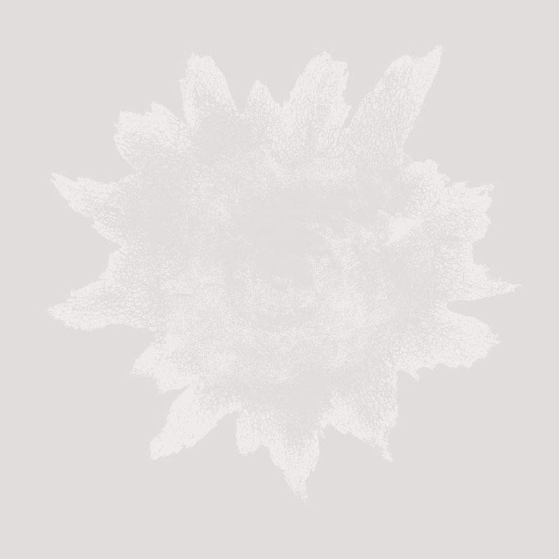 ElJaral01