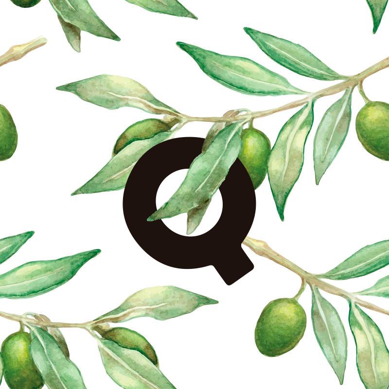 coque_olivo